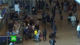 Новые требования США по проверке пассажиров коснутся двух московских аэропортов