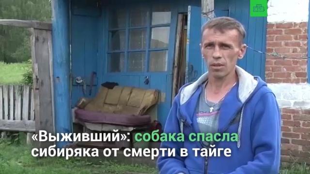 «Выживший»: сибиряк, неделю блуждавший втайге, выбрался живым.НТВ.Ru: новости, видео, программы телеканала НТВ