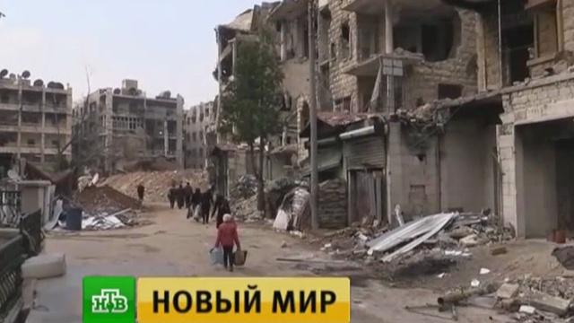 Трамп назвал перемирие вСирии результатом встречи сПутиным.Сирия, армии мира, войны и вооруженные конфликты, перемирие.НТВ.Ru: новости, видео, программы телеканала НТВ