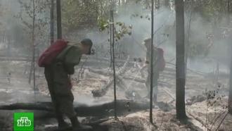 В Иркутской области потушили лесной пожар на землях Минобороны