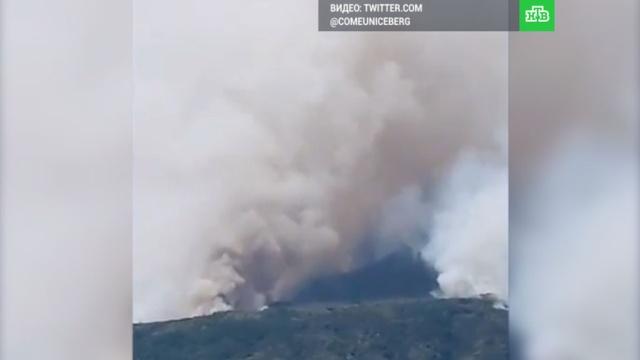 Везувий в дыму: туристы бегут из Неаполя из-за пожаров.вулканы, Италия, пожары.НТВ.Ru: новости, видео, программы телеканала НТВ