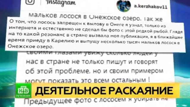 Кержаков прокомментировал «резонанс встране» вокруг его фото слососем.Интернет, Кержаков, Красная книга, браконьерство, охота и рыбалка, скандалы.НТВ.Ru: новости, видео, программы телеканала НТВ