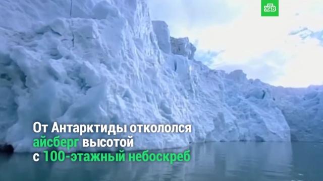 От ледника откололся гигантский айсберг.НТВ.Ru: новости, видео, программы телеканала НТВ