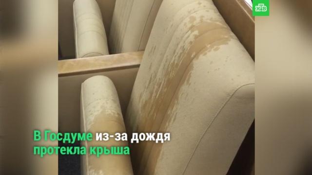 ВГосдуме из-за сильного дождя протекла крыша.НТВ.Ru: новости, видео, программы телеканала НТВ