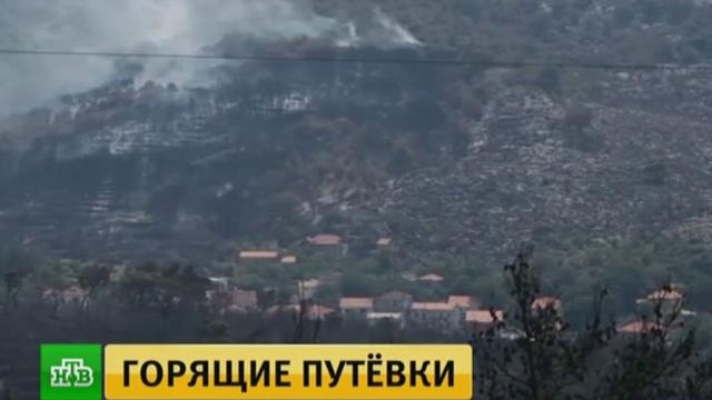 Туристов эвакуируют спляжей Европы из-за сильных пожаров.Италия, Черногория, пожары, туризм и путешествия, лесные пожары, Хорватия, эвакуация.НТВ.Ru: новости, видео, программы телеканала НТВ