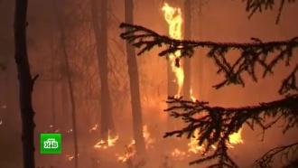 В охваченной лесными пожарами Якутии собираются вызвать искусственный дождь