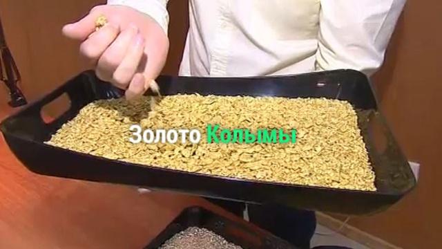 «Золотая лихорадка» на Колыме.НТВ.Ru: новости, видео, программы телеканала НТВ