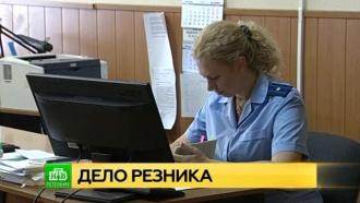 Общественная палата Петербурга требует полицию объяснить арест депутата Резника