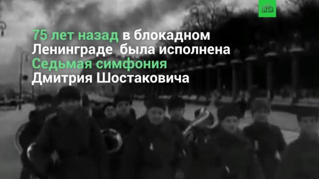 «Ленинградская» симфония Дмитрия Шостаковича.НТВ.Ru: новости, видео, программы телеканала НТВ