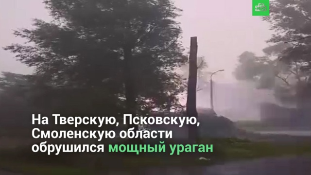 Ураган вТверской, Псковской иСмоленской областях.НТВ.Ru: новости, видео, программы телеканала НТВ