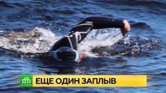 Петербуржец проплыл 30километров по Финскому заливу впамять ожертвах теракта