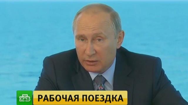 Путин потребовал проверить экологическую ситуацию на Байкале.Байкал, Бурятия, Путин, реки и озера, экология.НТВ.Ru: новости, видео, программы телеканала НТВ