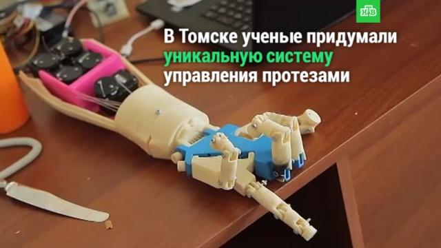 Ученые придумали уникальную систему управления протезами.НТВ.Ru: новости, видео, программы телеканала НТВ