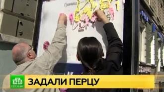 Расклейщики интим-объявлений объявили войну активистам из «Красивого Петербурга»