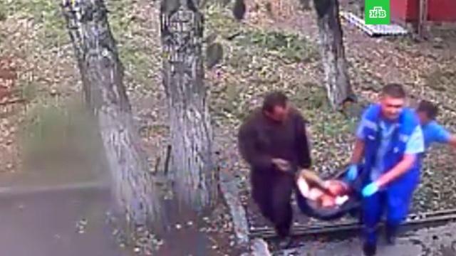 Медведь оторвал руку пьяному вИркутской области.животные, Иркутская область, медведи, пьяные.НТВ.Ru: новости, видео, программы телеканала НТВ