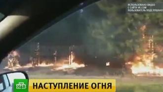 Спасатели локализовали крупный лесной пожар в Ростовской области