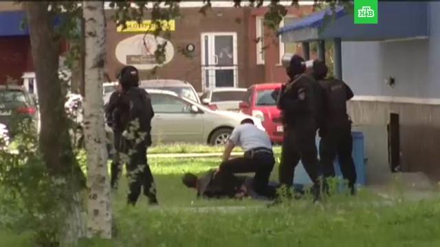 Полиция проверяет подозрительных людей после резни вСургуте.нападения, полиция, Сургут.НТВ.Ru: новости, видео, программы телеканала НТВ