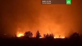 Ктушению лесов Ростовской области привлекли специалистов из соседних регионов