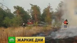 Авиагруппировка МЧС устранила угрозу распространения лесных пожаров вРостовской области