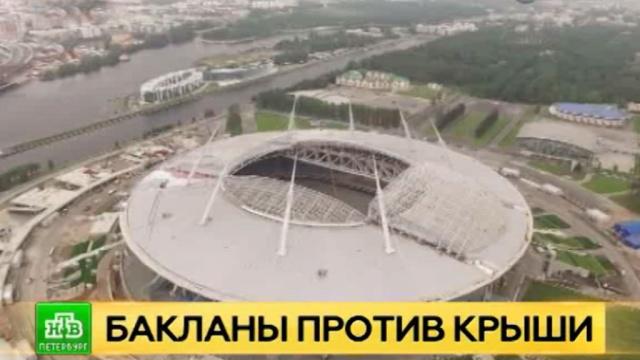 Баклан испортил крышу нового петербургского стадиона иосвоил Twitter.Twitter, Интернет, Санкт-Петербург, соцсети, стадионы.НТВ.Ru: новости, видео, программы телеканала НТВ