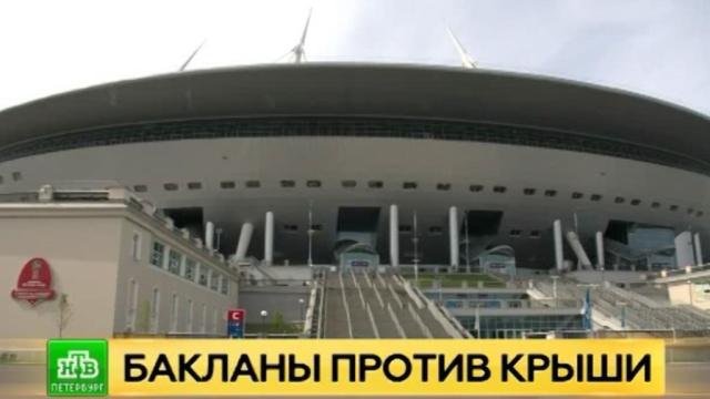 Питерские орнитологи назвали чаек главными виновницами протечек на новом стадионе.Twitter, Интернет, Санкт-Петербург, соцсети, стадионы.НТВ.Ru: новости, видео, программы телеканала НТВ
