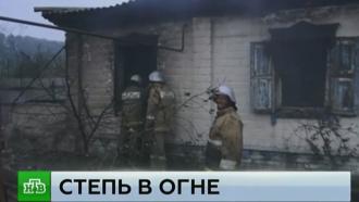 К тушению природных пожаров под Волгоградом подключили авиацию