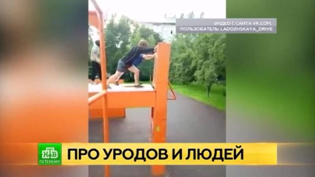 Петербургская полиция задержала подростков-изуверов сРжевки.Санкт-Петербург, дети и подростки, драки и избиения, соцсети.НТВ.Ru: новости, видео, программы телеканала НТВ