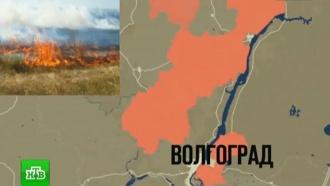 В&nbsp;Волгоградской области <nobr>из-за</nobr> природных пожаров эвакуируют детские лагеря