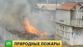 Более 5тысяч пожарных борются согнем вВолгоградской области