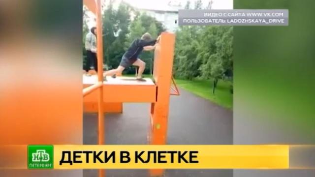 Питерских подростков сОхты подозревают ввандализме, грабежах икражах.Санкт-Петербург, дети и подростки, драки и избиения, полиция, расследование, соцсети.НТВ.Ru: новости, видео, программы телеканала НТВ