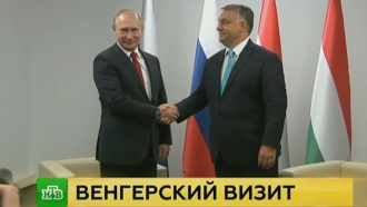 Путин пообещал провести для венгерского премьера урок по теории дзюдо