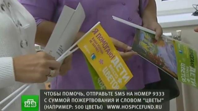 «Дети вместо цветов»: школьники отказываются от букетов на 1 Сентября ради больных сверстников.благотворительность, дети и подростки, SOS, школы.НТВ.Ru: новости, видео, программы телеканала НТВ