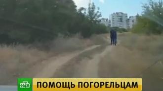 Путину доложили о задержании подозреваемого в поджогах в Волгоградской области