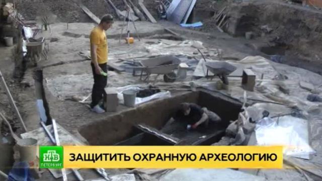 Археологи просят Минкультуры защитить культурный слой от дилетантов.Санкт-Петербург, археология.НТВ.Ru: новости, видео, программы телеканала НТВ