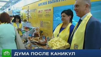 Депутаты Госдумы рассказали о планах на осеннюю сессию