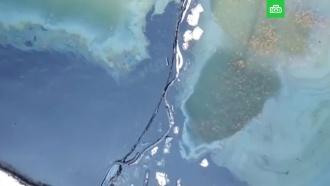 Пляжи Афин закрыты <nobr>из-за</nobr> разлива нефти
