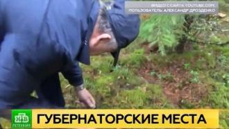 Губернатор Ленобласти сходил за грибами и поделился любимыми рецептами
