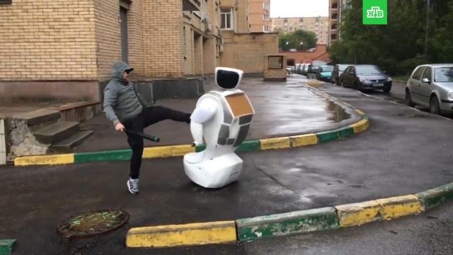 Неизвестный с битой напал на изучавшего москвичей робота: видео.Москва, автомобили, драки и избиения, нападения, роботы.НТВ.Ru: новости, видео, программы телеканала НТВ