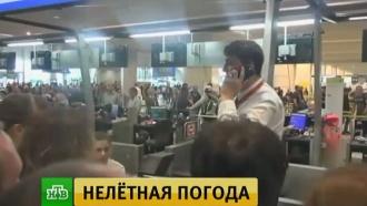 СМИ: Домодедово отказывается вкредит заправлять самолеты <nobr>«ВИМ-Авиа»</nobr>