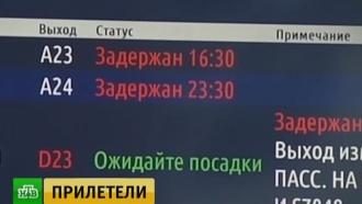 После задержек рейсов <nobr>«ВИМ-Авиа»</nobr> возбуждено дело охищении денег пассажиров