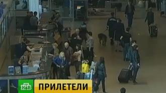 «ВИМ-Авиа» выполнит рейсы в Благовещенск и Анадырь