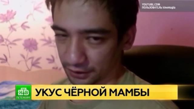 Несчастный случай или суицид: СК выясняет обстоятельства смерти блогера-серпентолога.Интернет, Ленинградская область, блогосфера, змеи, смерть.НТВ.Ru: новости, видео, программы телеканала НТВ
