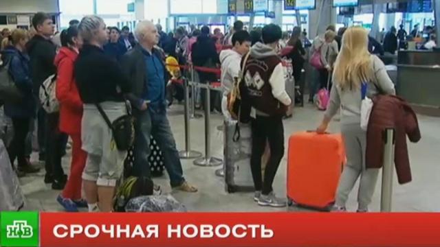 Минтранс: регулярные рейсы «ВИМ-Авиа» продолжатся до 15октября.Минтранс РФ, авиакомпании, авиация, туризм и путешествия.НТВ.Ru: новости, видео, программы телеканала НТВ