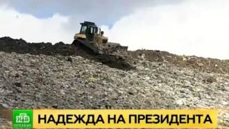 Петербургские депутаты просят Путина закрыть гигантскую свалку на севере города