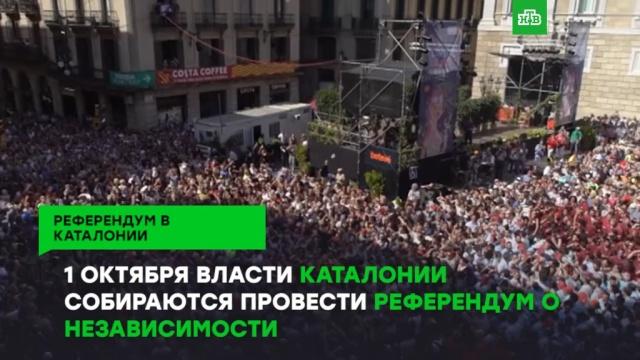 1октября состоится референдум онезависимости Каталонии.ЗаМинуту, Испания, Каталония, референдумы.НТВ.Ru: новости, видео, программы телеканала НТВ