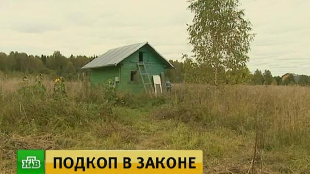 Костромских фермеров обложили приличными штрафами из-за ошибки бюрократов.Костромская область, законодательство, сельское хозяйство.НТВ.Ru: новости, видео, программы телеканала НТВ