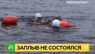 Октябрьский заплыв по Финскому заливу сорвался из-за пьяной выходки
