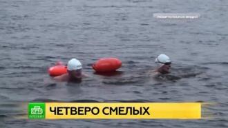 Четверо смелых пустились вплавь из Петербурга в Кронштадт