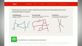 Собачья и<nobr>8-я</nobr> Щель: вгородах России «Яндекс» нашел улицы соригинальными названиями
