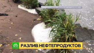 ВПетербурге ликвидируют масштабный разлив нефтепродуктов на реке Славянке